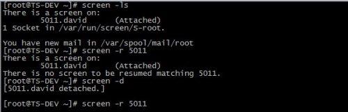 《Linux Screen 命令详解---让程序在后台运行》